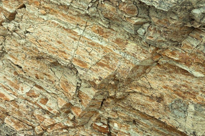 地面上形成的水成岩层数 在亚速号海的南部的海岸的露出 塔曼半岛,捷姆柳克 免版税库存照片