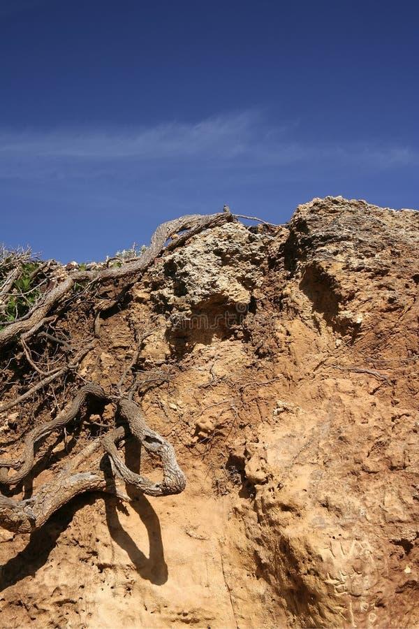 地面土壤 免版税库存照片