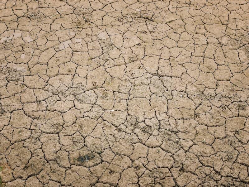 地面干燥泥贫瘠背景和纹理 免版税库存图片