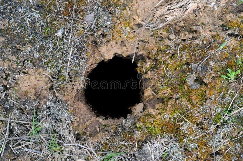地面漏洞 库存图片