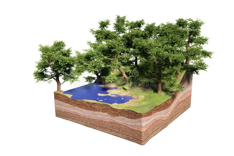 地面的横断面与湖、森林和海滩的,与树的田园诗自然求概念3d例证的立方,隔绝在白色ba 皇族释放例证