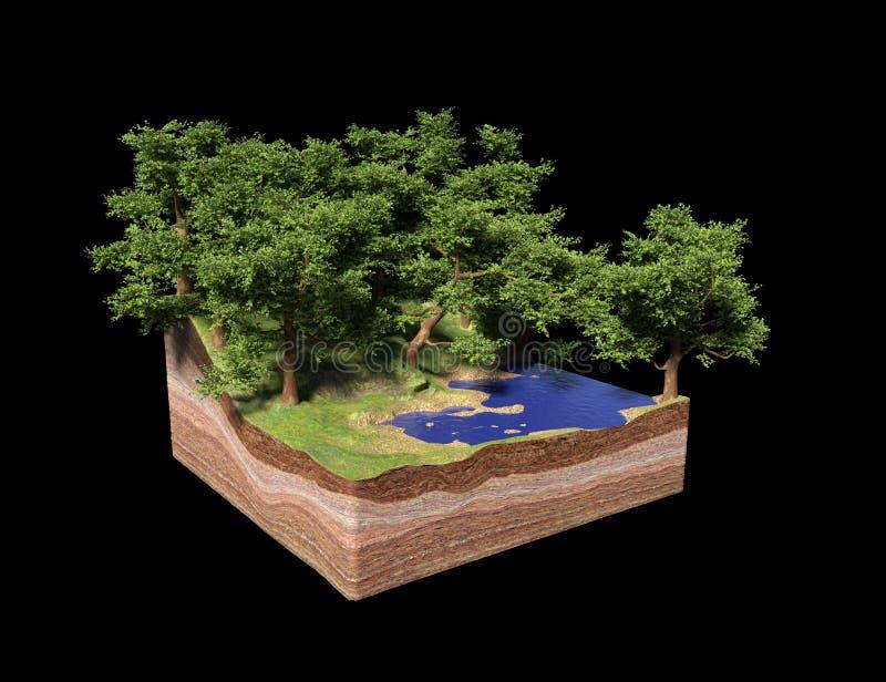 地面的横断面与湖、森林和海滩的,与树的田园诗自然求概念3d例证的立方,隔绝在黑ba 皇族释放例证