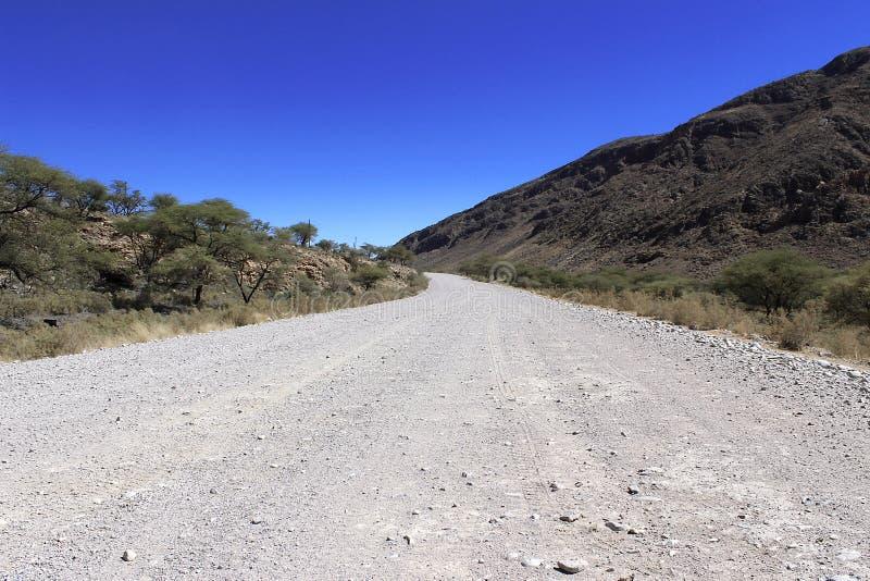 地面路通过沙漠 免版税库存照片