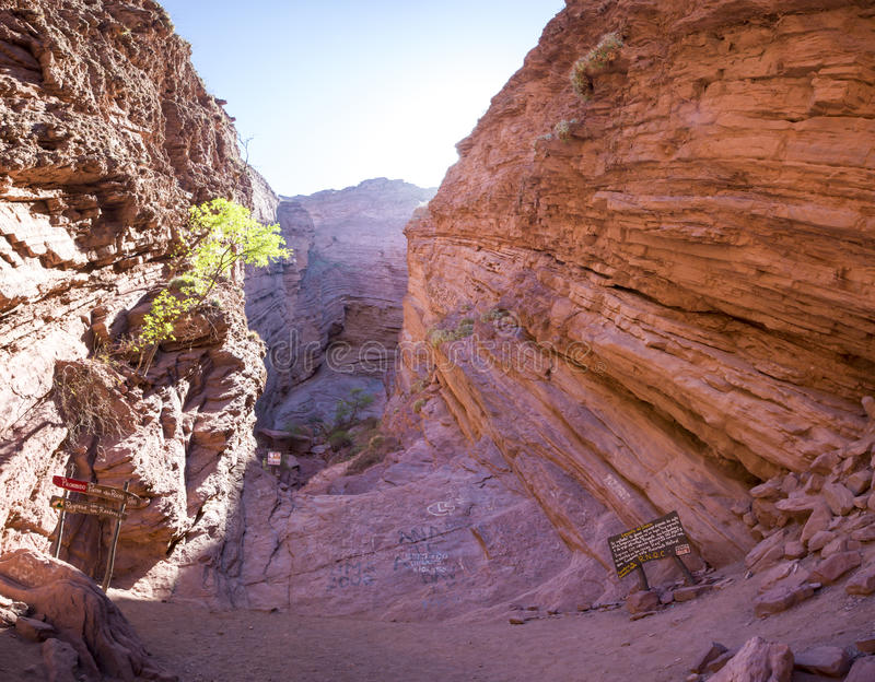 地质岩层加尔甘塔del蝙蝠鱼,阿根廷 免版税库存图片