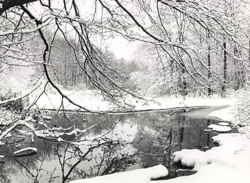 场面冬天 库存图片
