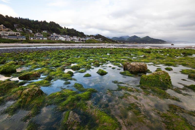 坎农海滩是美国俄勒冈州克拉索普县的一座城市,在雨暴前,天气异常,旅游,旅游,沙滩, 库存图片