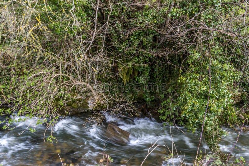 坎塔布里亚的领域 库存照片