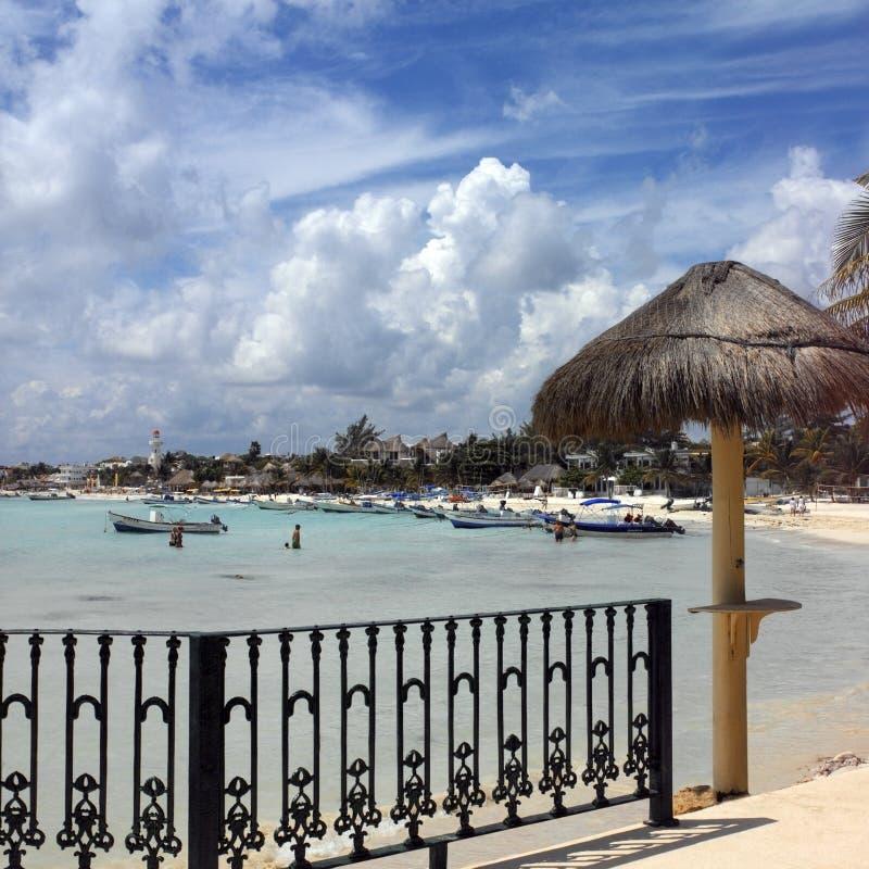 坎昆在playa附近的运货马车的车夫del墨西&# 库存照片