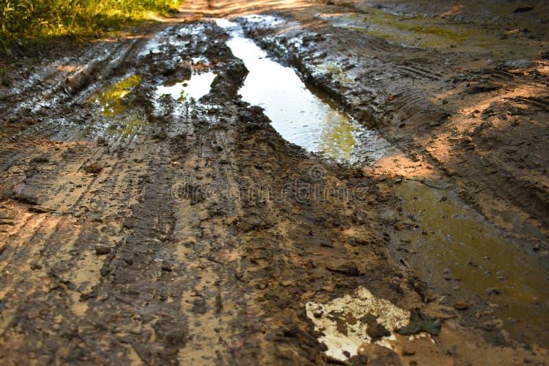 坏地面路在雨以后的森林里 免版税库存图片