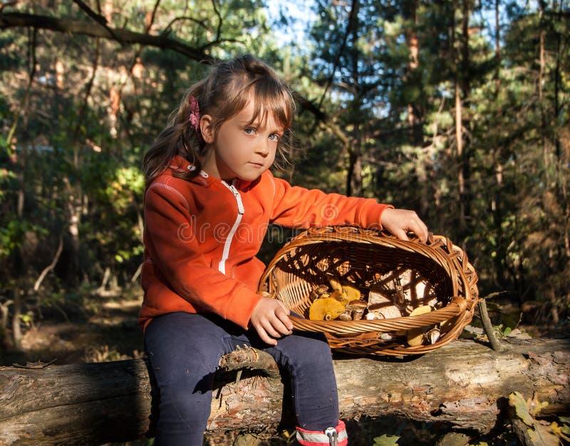 坐一棵落的树和拿着一个篮子用蘑菇的小俏丽的女孩 免版税库存图片