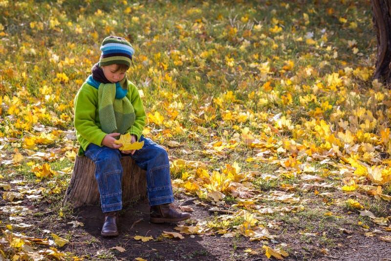 坐与黄色叶子的哀伤的男孩在秋天公园 免版税库存图片