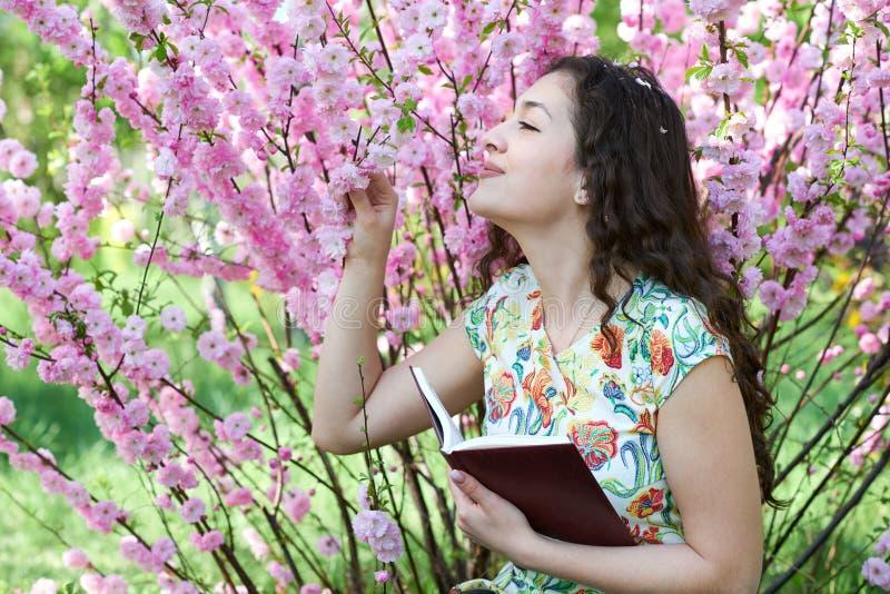 坐在与桃红色花的灌木附近和读书的女孩画象 图库摄影