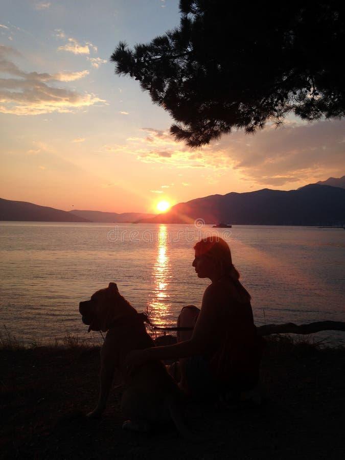 坐在亚得里亚海旁边的女孩和狗 免版税库存照片