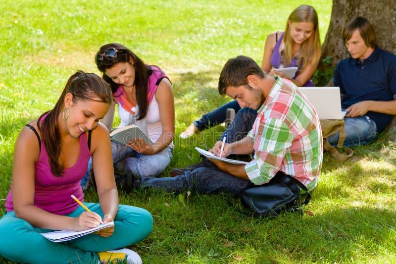 坐在公园的学员学习读取文字 免版税库存照片