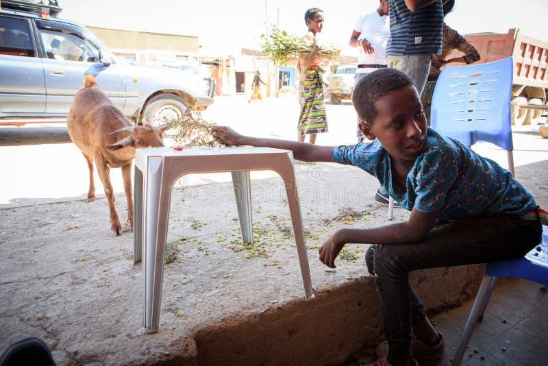 坐在咖啡馆的孩子在路附近 库存照片