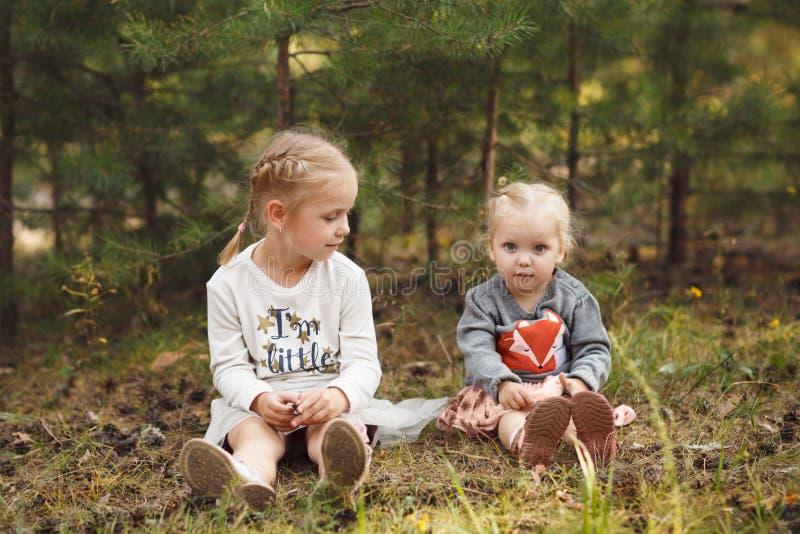 坐在夏天森林里的两个逗人喜爱的妹 图库摄影
