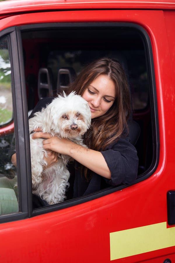 坐在有她小的白色狗的汽车的年轻深色的妇女 库存图片
