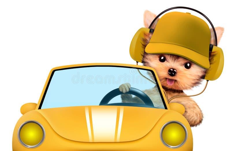 坐在有耳机的敞蓬车的滑稽的小狗 向量例证