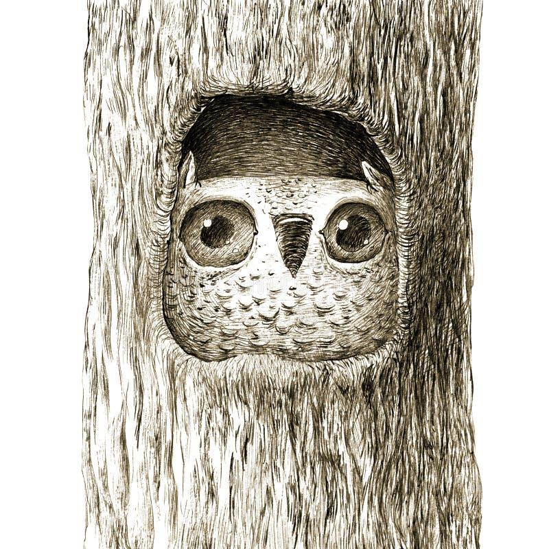 坐在树凹陷的逗人喜爱的小猫头鹰 皇族释放例证