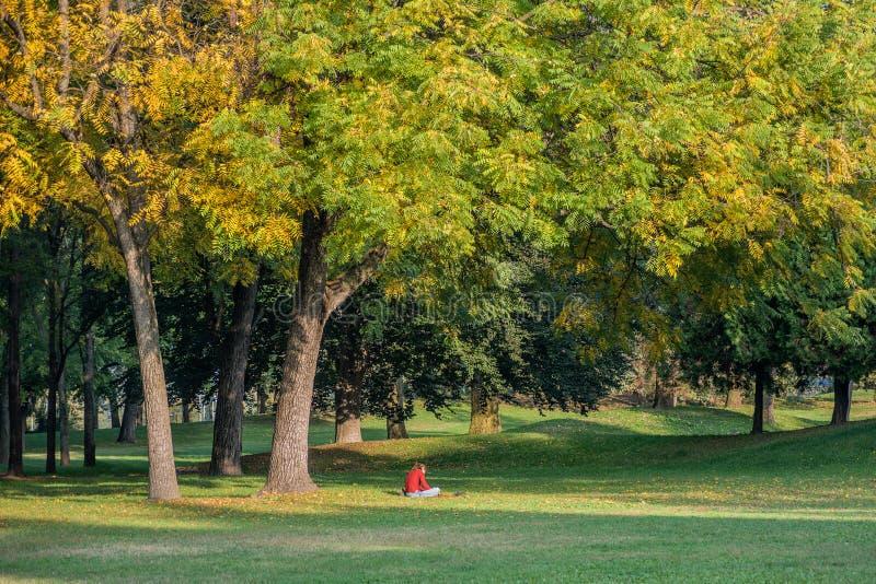 坐在树和阅读书下的十几岁的女孩 免版税图库摄影