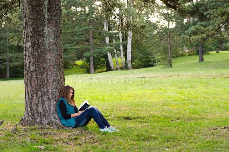 坐在树和阅读书下的十几岁的女孩在森林里 库存图片