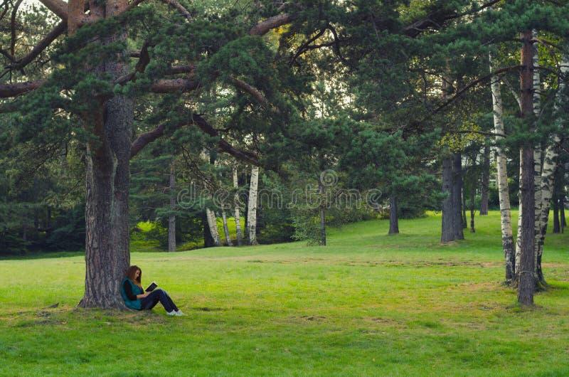 坐在树和阅读书下的十几岁的女孩 免版税库存照片