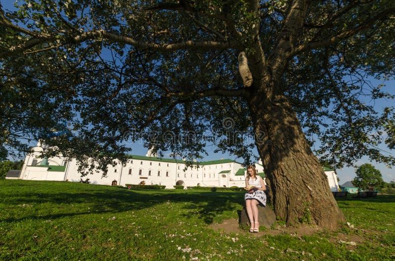 坐在树和读的书下的十几岁的女孩 免版税库存照片
