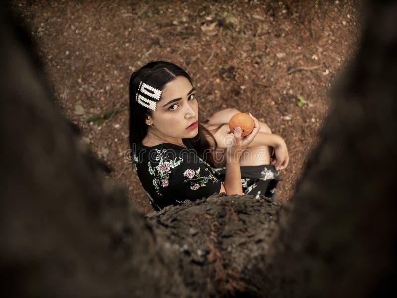 坐在树附近的白种人出现的可爱的女孩,在手中拿着蜜桔 o 免版税库存图片