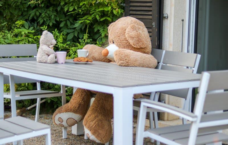 坐在桌上的两个甜玩具熊室外食用茶用曲奇饼 对面友谊  免版税库存图片