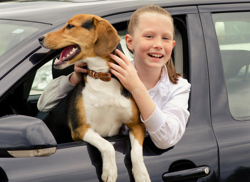 坐在汽车的愉快的smilling的女孩和小猎犬小狗 免版税库存照片