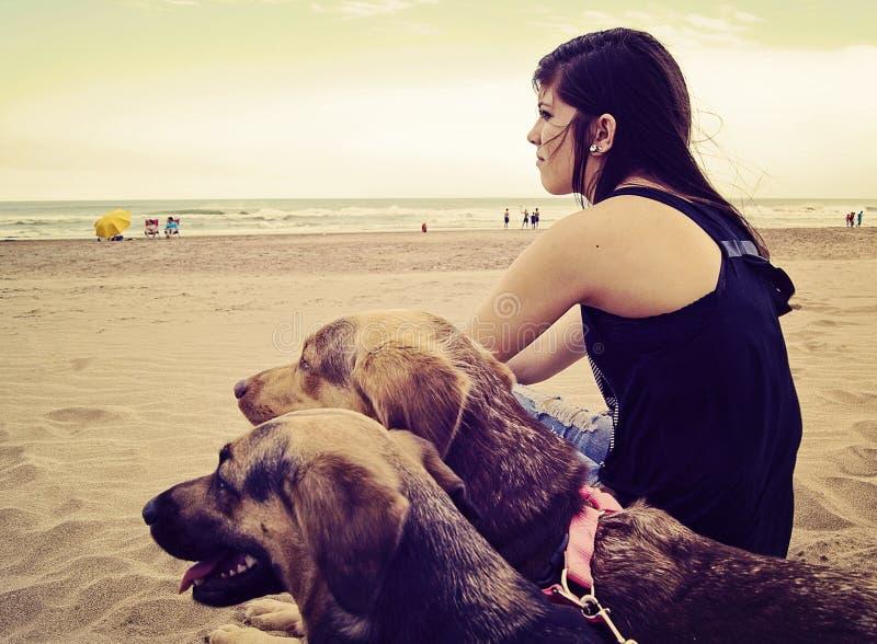 坐在海滩的女孩 库存图片