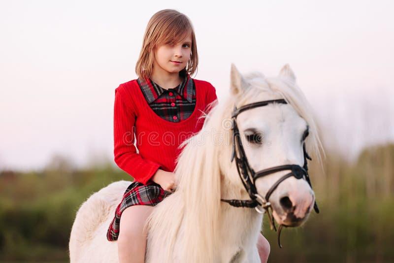 坐在礼服的一匹马和调查照相机的小女孩 免版税库存照片