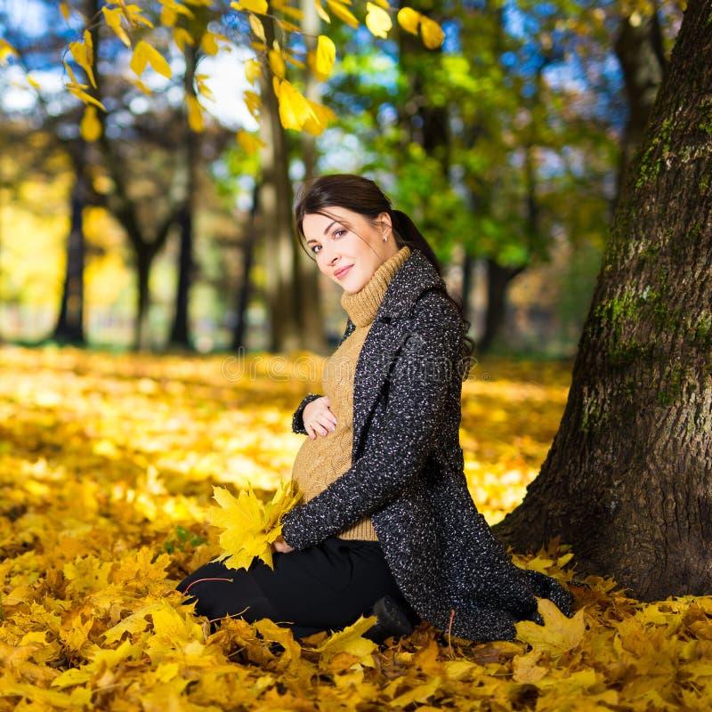 坐在秋天公园的年轻美丽的孕妇 库存图片