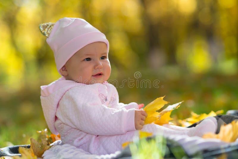 坐在秋天叶子和秋天光的婴孩 免版税库存图片