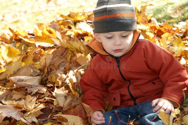 坐在秋天叶子的孩子 免版税库存图片