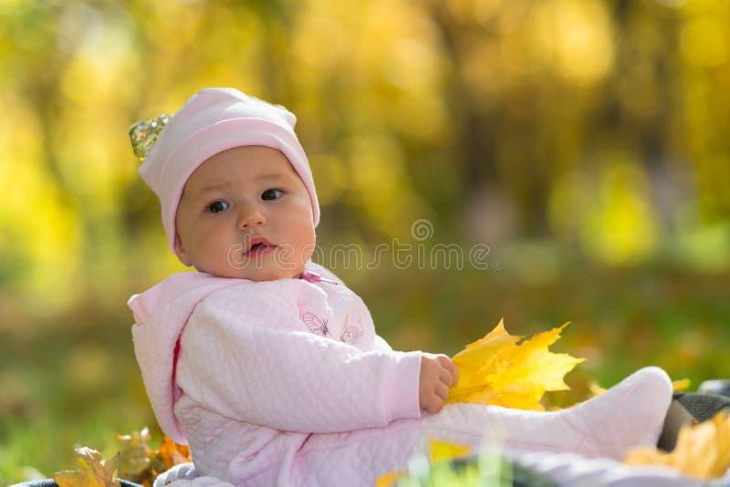 坐在秋天,秋天的婴孩在公园场面离开 库存图片