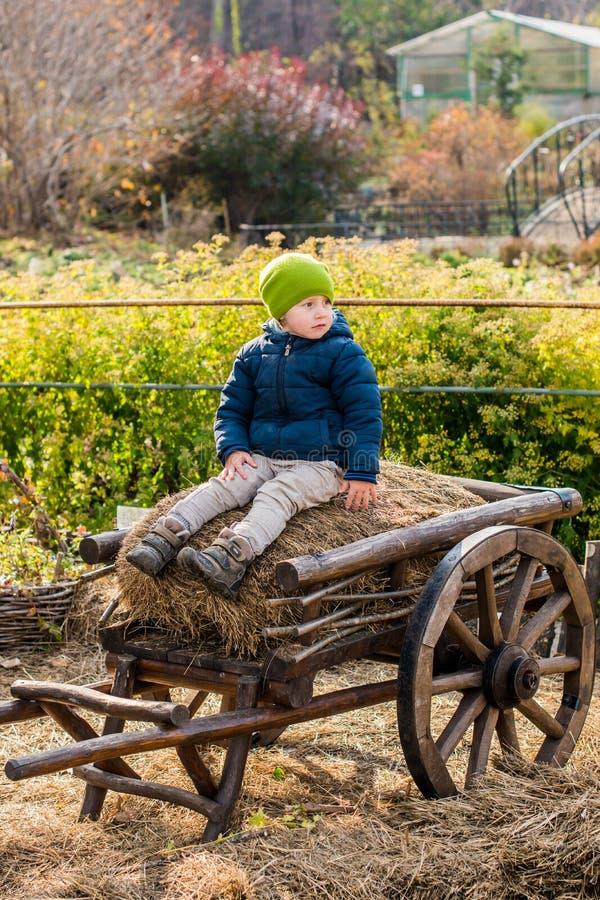 坐在葡萄酒木支架的古板的小男孩 库存照片