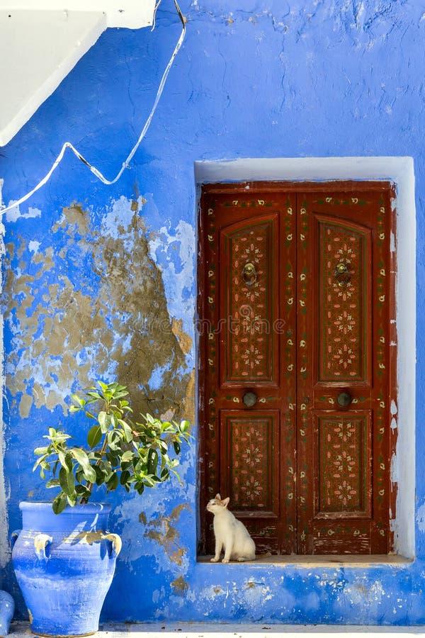 坐在门前面的猫 图库摄影