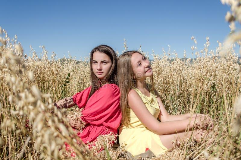 坐在领域的女孩在阳光下 免版税库存照片
