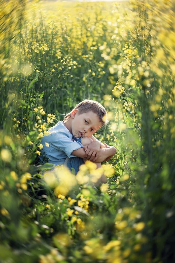 坐在高草,扶植的面孔用手和看照相机的不满意的学龄前儿童男孩 免版税库存图片