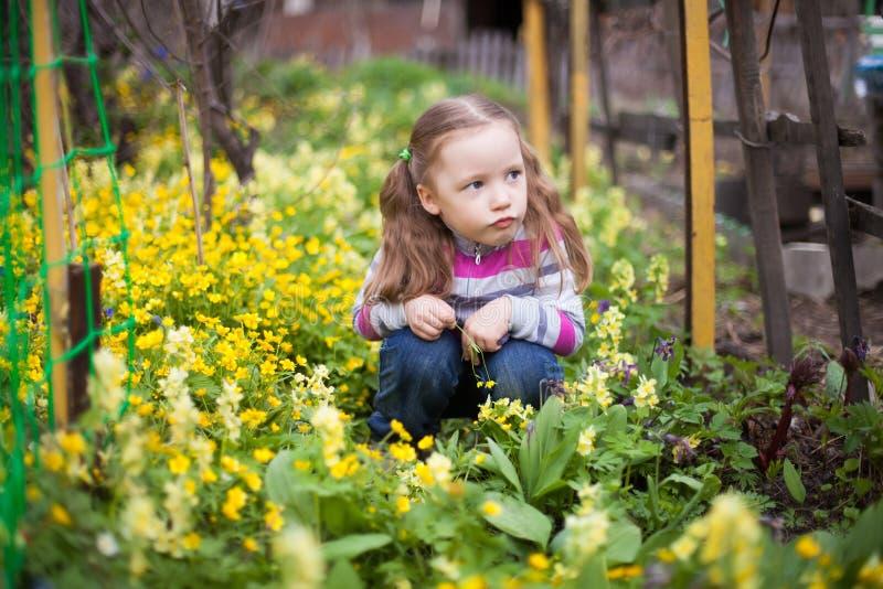 坐在黄色花的小女孩在春天庭院里 库存图片