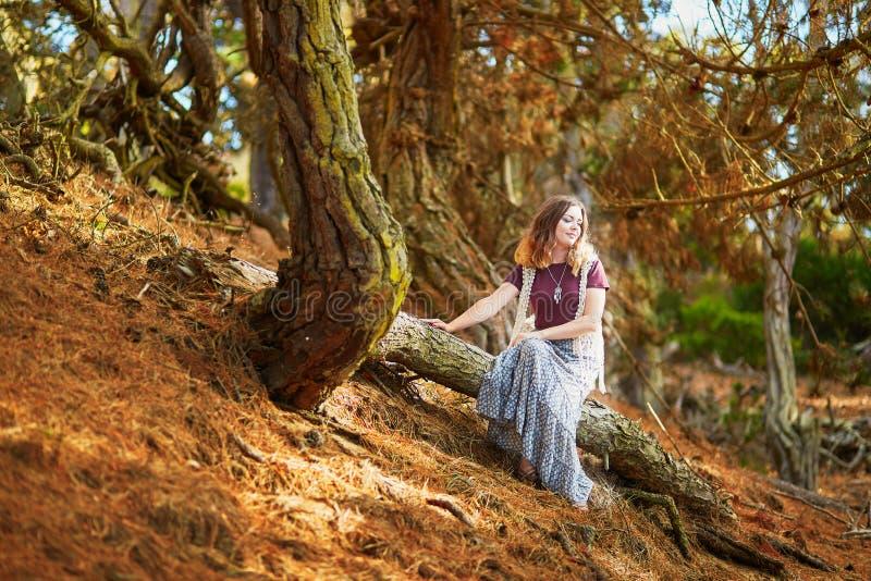 坐在Presidio公园的美丽的年轻浪漫女孩在旧金山 库存图片