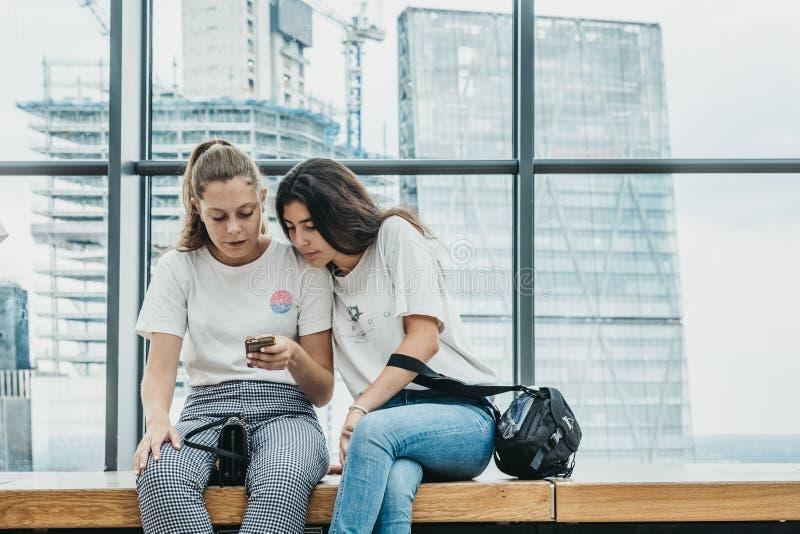 坐由窗口天空的两个少妇从事园艺,伦敦,英国 免版税库存图片