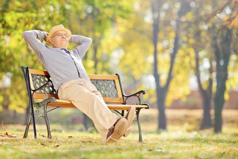 坐长凳和放松在公园的资深绅士 库存照片