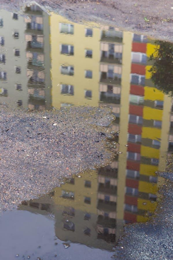 水坑反射 免版税库存照片