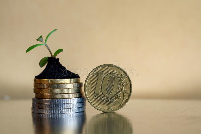 10块卢布硬币 俄国金钱概念-在土壤的硬币与年幼植物 库存图片