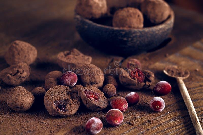 块菌状巧克力用蔓越桔 免版税库存照片