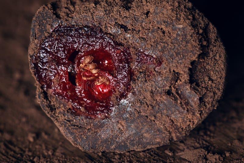 块菌状巧克力用蔓越桔 免版税图库摄影