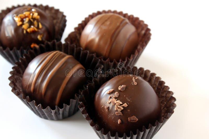 块菌状巧克力 库存图片