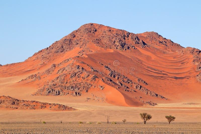 坚固性沙丘风景-纳米比亚沙漠 免版税图库摄影